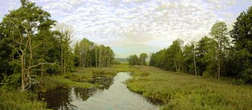 Härliga landskap av naturen av Vitryssland Arkivfoto