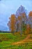 Härliga landskap av naturen av Vitryssland Arkivbild
