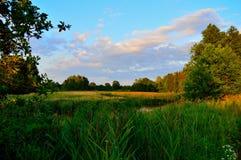 Härliga landskap av naturen av Vitryssland Royaltyfria Foton