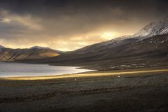 Härliga landskapsnöberg på pangongsjön med skymningsolnedgångbakgrund Leh Ladakh, Indien fotografering för bildbyråer