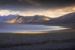 Härliga landskapsnöberg på pangongsjön med skymningsolnedgångbakgrund Leh Ladakh, Indien arkivbild