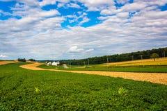 Härliga lantgårdfält och Rolling Hills near arga vägar, Pennsy royaltyfri fotografi