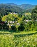 Härliga lantliga hus som lokaliseras i ett pittoreskt område bland gröna lutningar och träd nära vägen Royaltyfri Fotografi