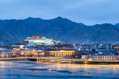 Härliga lhasa i skymning Arkivfoto