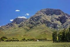 Härliga liggande av South Africa Royaltyfri Fotografi