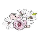 Härliga liljor och en tappningkamera också vektor för coreldrawillustration fina blommor Tappningtryck på vykortet, affischen ell royaltyfri illustrationer