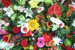 Härliga ljusa blommor i stor bukett Arkivfoto