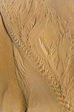 Härliga modeller på sanden royaltyfri bild