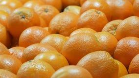 Härliga mogna apelsiner på stånd bakgrund bär fruktt orangen arkivfilmer
