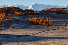 Härliga nedgångbladfärger och väg i berg Arkivbild