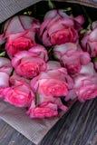 Härliga nya rosa rosor arkivbilder