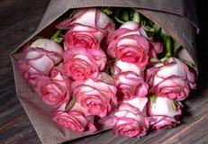 Härliga nya rosa rosor royaltyfri foto