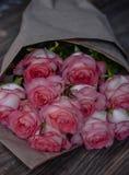 Härliga nya rosa rosor arkivfoton