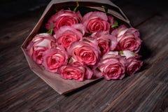 Härliga nya rosa rosor royaltyfria foton