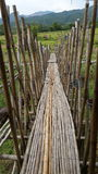 Härliga och bra idébambu bro i Thailand Royaltyfri Foto