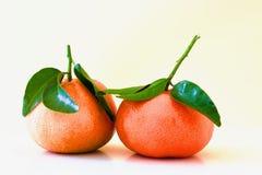 Härliga orange mandarines Arkivfoto