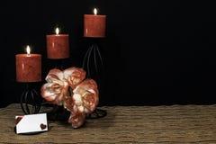 Härliga orange och orange och vita rosor, röd stearinljus som sätta sig på svarta stearinljushållare på den matta för ingreppsstä royaltyfri bild
