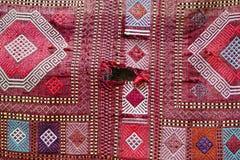 Härliga orientaliska handgjorda mattor för färgrik tappning Arkivfoton