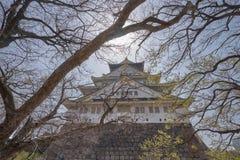 Härliga Osaka Castle med filialen av trädet Royaltyfri Bild