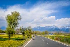Härliga Pahalgam, Jammu and Kashmir royaltyfri foto