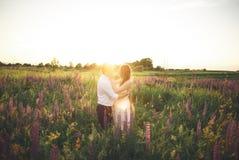 Härliga par, brud, ansar att kyssa och att krama i fältsolnedgången Royaltyfri Foto