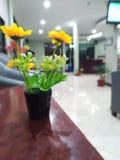 härliga plast- blommor i kontoret arkivbild