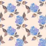 härliga ro för bakgrund Sömlös modell med blommor 61 Royaltyfri Fotografi