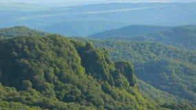 Härliga Rolling Hills med frodigt gräs och den ljusa ängen blommar, ekologi arkivfilmer