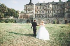 Härliga romantiska brölloppar av nygifta personer som kramar nära gammal slott royaltyfria bilder