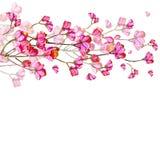 Härliga rosa färgblommor stock illustrationer