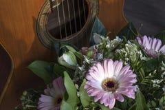 Härliga rosa gerberas med gröna sidor och den bruna gitarren Arkivfoto