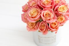 Härliga rosa rosor i en rund ask Persikarosor i en rund ask Rosor i en rund ask på en vit träbakgrund Royaltyfri Foto