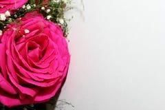 Härliga rosor bildade in i en härlig bukett Royaltyfria Bilder