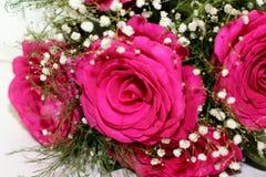 Härliga rosor bildade in i en härlig bukett Arkivfoto