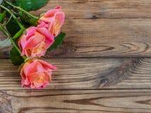 Härliga rosor på tabellen Arkivfoto