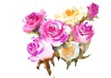 Härliga rosor, vattenfärgmålning Arkivbild