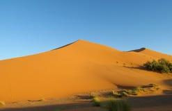 Härliga sandökendyn i den Sahara öknen Royaltyfri Bild