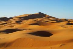 Härliga sanddyn i den Sahara öknen Fotografering för Bildbyråer
