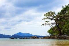 Härliga sikter av ön i havet med stenar och träd Arkivbild