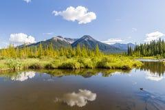 Härliga sjöcinnoberfärger i bergen av den Banff nationalparken Arkivbild
