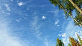 Härliga Skies royaltyfri foto