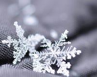 Härliga snöflingor som ses upp slut Royaltyfria Foton