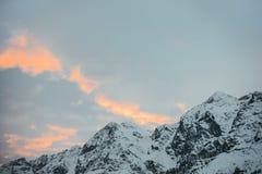 härliga snöig berg under solnedgång arkivbild
