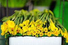 Härliga snittblommor som säljs på utomhus- blomsterhandel Arkivbild