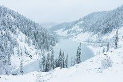 Härliga taigakullar på Far East av Ryssland i början av oktober Taiga i vinter härlig natur Snöig väder Fotografering för Bildbyråer