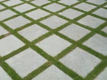 Härliga tegelplattor i trädgård Arkivbilder