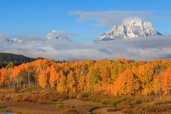 Härliga Teton Autumn Scenic Royaltyfri Bild