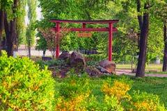 Härliga Torii portar i Kyoto parkerar japanträdgården Arkivfoto
