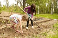 härliga trädgårds- flickor Arkivbild