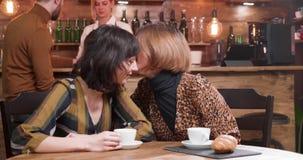 Härliga unga kvinnor skvallrar i en coffee shop stock video